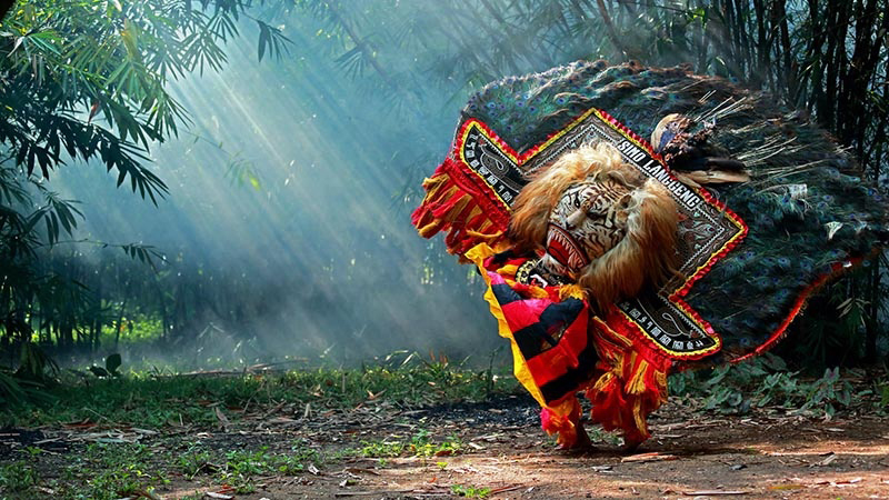 Reog part of Ponorogo's identity. It used to be staged at the night of the full moon, Reog is a dance that's heavily loaded with mystical overtones and superstition. It is all about the story of a battle between the King of Ponorogo against the lion-like mythical creature called Singa Barong.